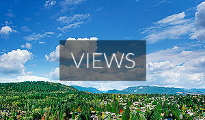 BEEDIE_LIVING_CROWN_views_small